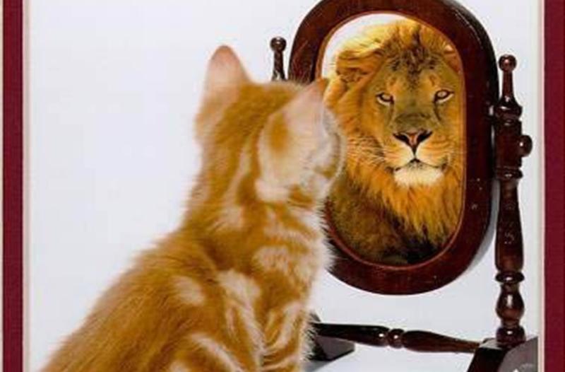 Jos uskallat katsoa peiliin löydät vahvuutesi